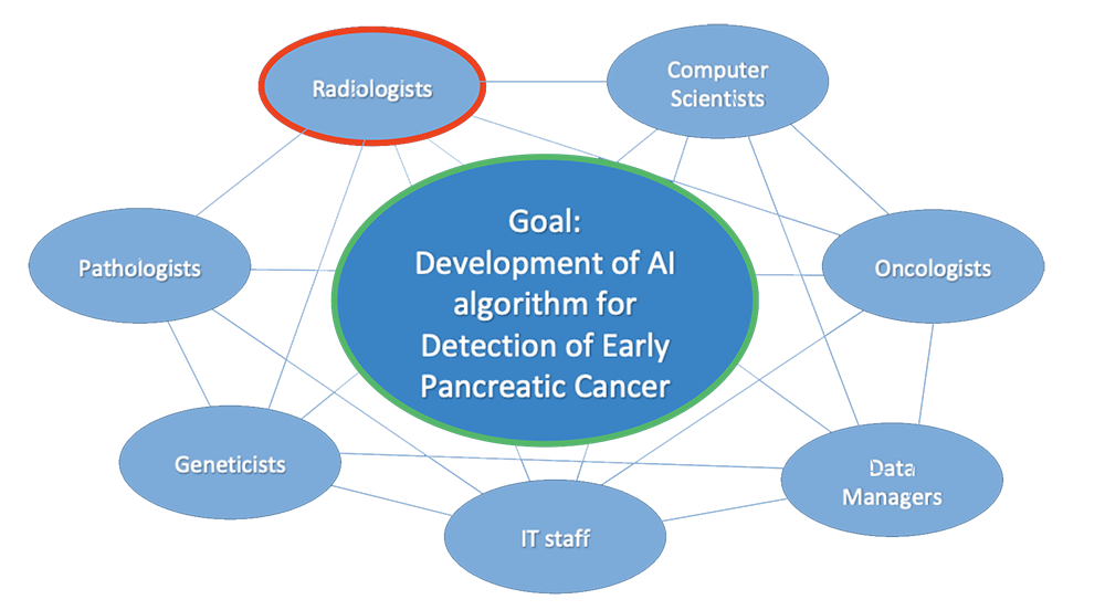 Multidisciplinary Approach in Development of AI Algorithm for Detection of Early Pancreatic Cancer